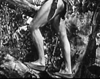 Tarzan wearing shoes in the jungle and jumps..